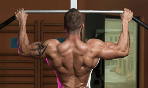 Best Home Pull Up Bars - a buyer's guide