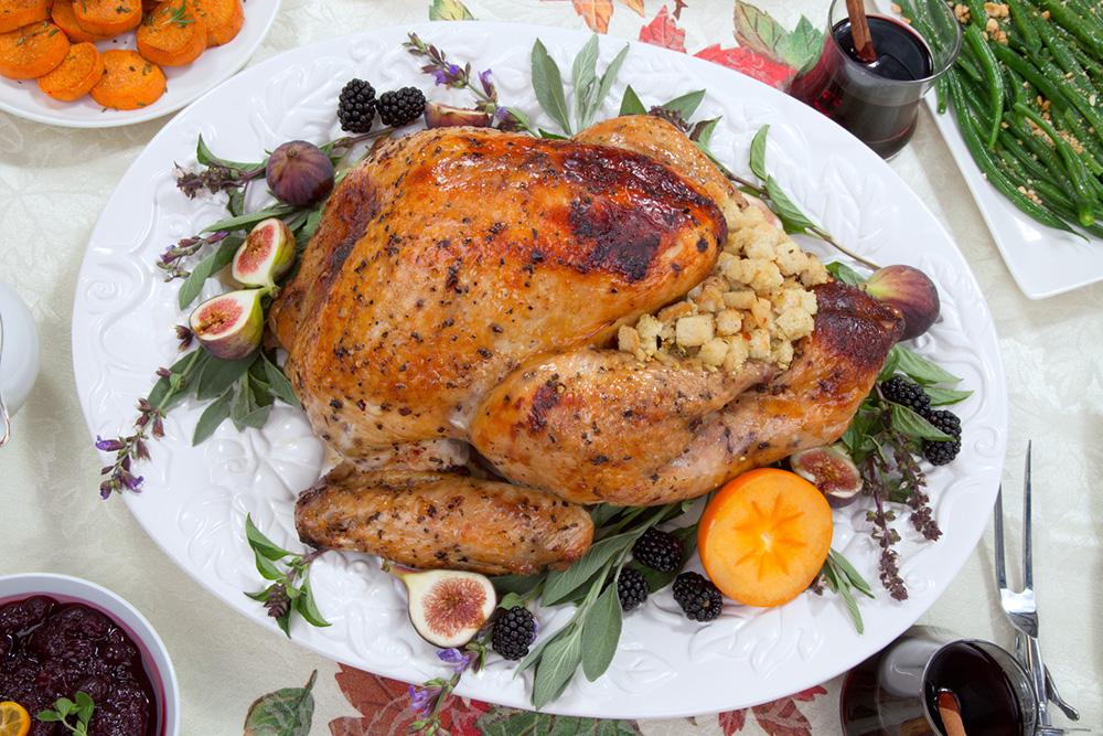 Turkey Vs Chicken Food