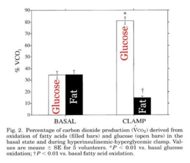 Fatty Accids Versus Glucose Oxidation